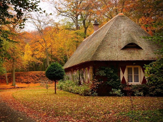 automne maison